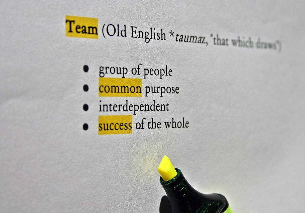 Team-Common-Success